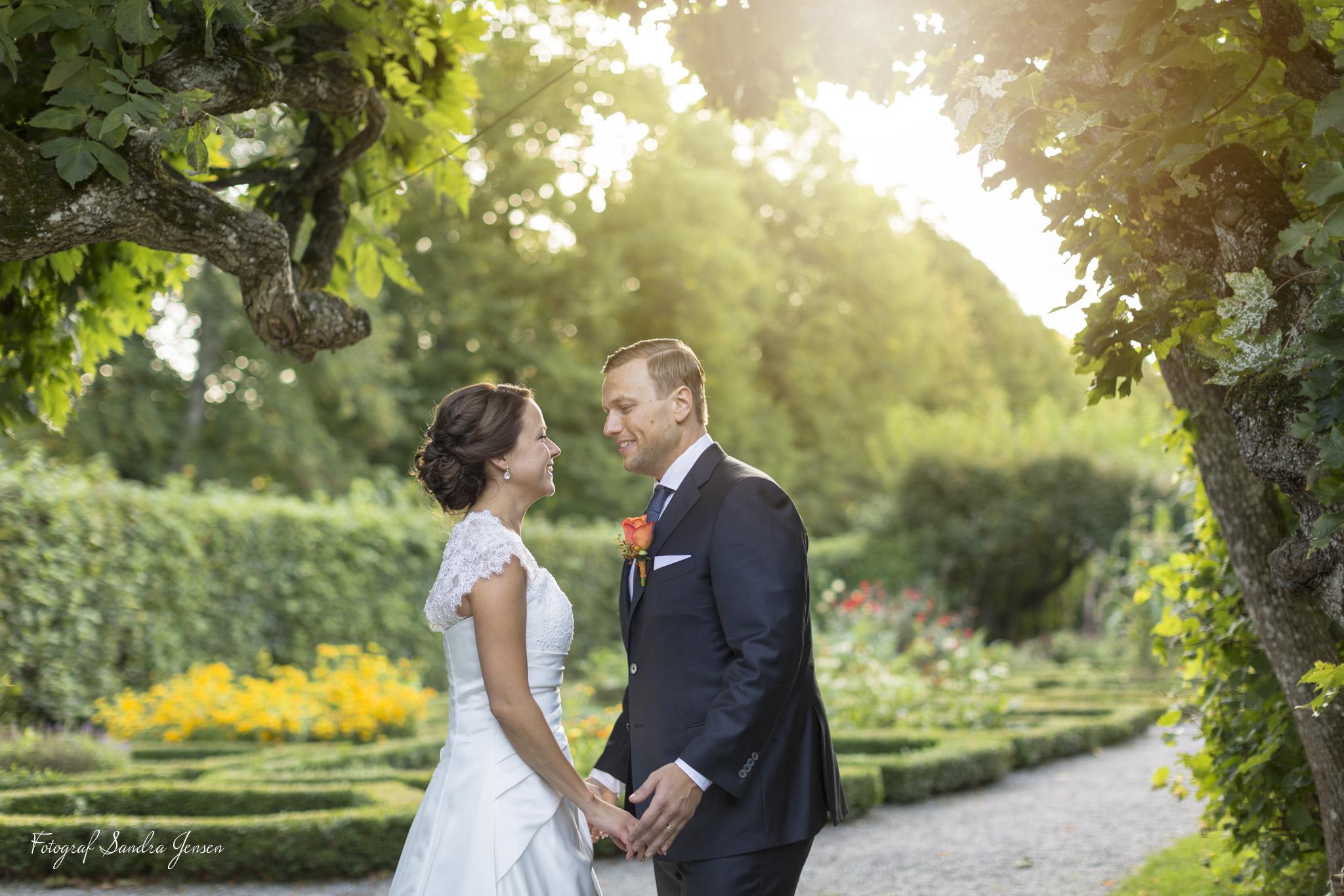 Ann & Fredrik Bröllopsporträtt vid Ulriksdals Slott, Bröllops